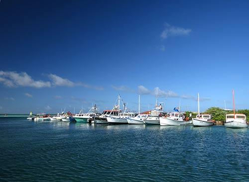 The Annual Bonaire International and Local Fishing Tournament Starts Tomorrow, January 14th, 2016