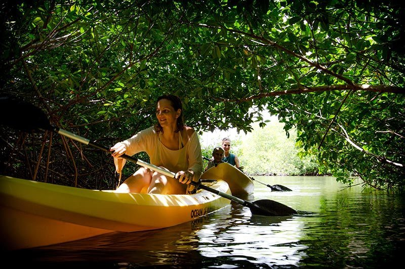 The Mangrove Info Center is the place for kayaking.
