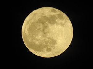 Experience the November Supermoon while walking the Lagadishi Trail on Bonaire.