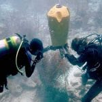 Cargill and STINAPA Collaborate to Protect Corals Under Bonaire's Salt Pier
