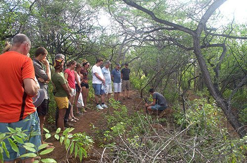 Join Echo in reforestations efforts in Bonaire's dry forest areas.