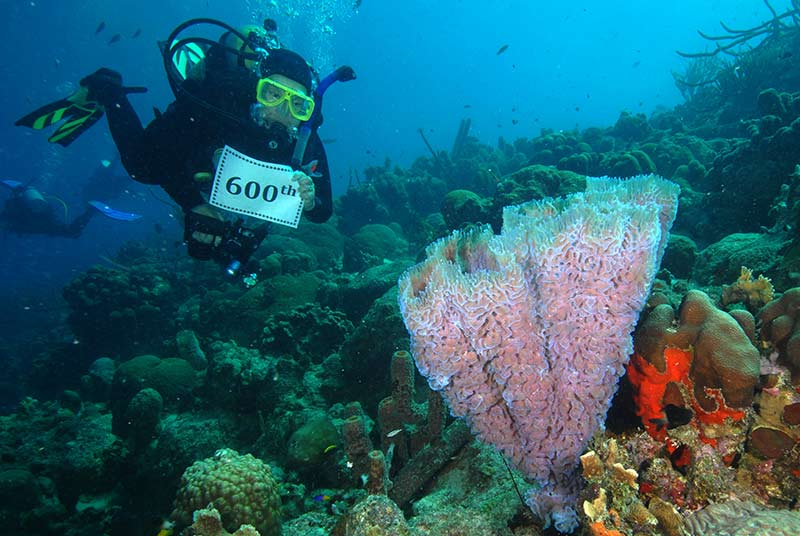 Joan Zale, Frequent Bonaire Visitor, Celebrates Her 600th Dive While on Bonaire