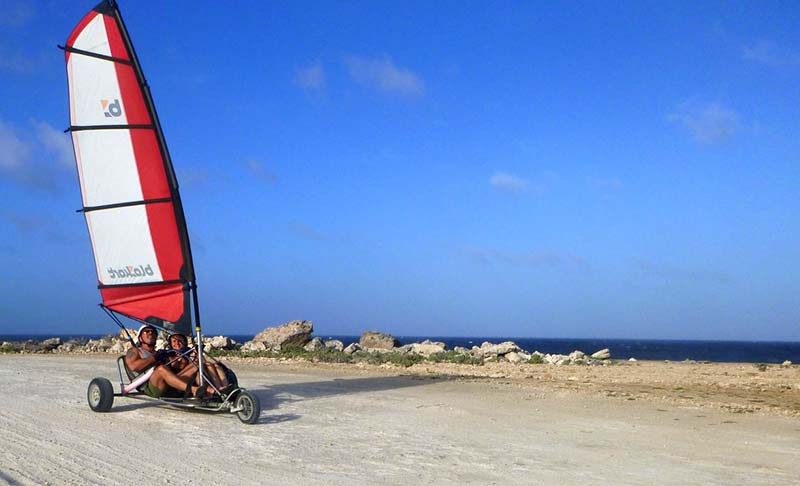 Sail along Bonaire's coast, while staying on land.