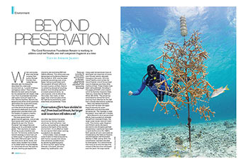 Article by Andrew Jalbert in Diver Magazine.